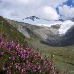 Zillertaler Alpen Traverse